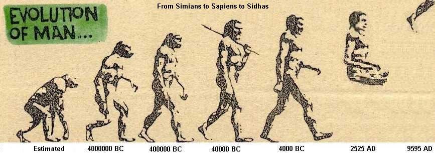 Human evolution - photo#19